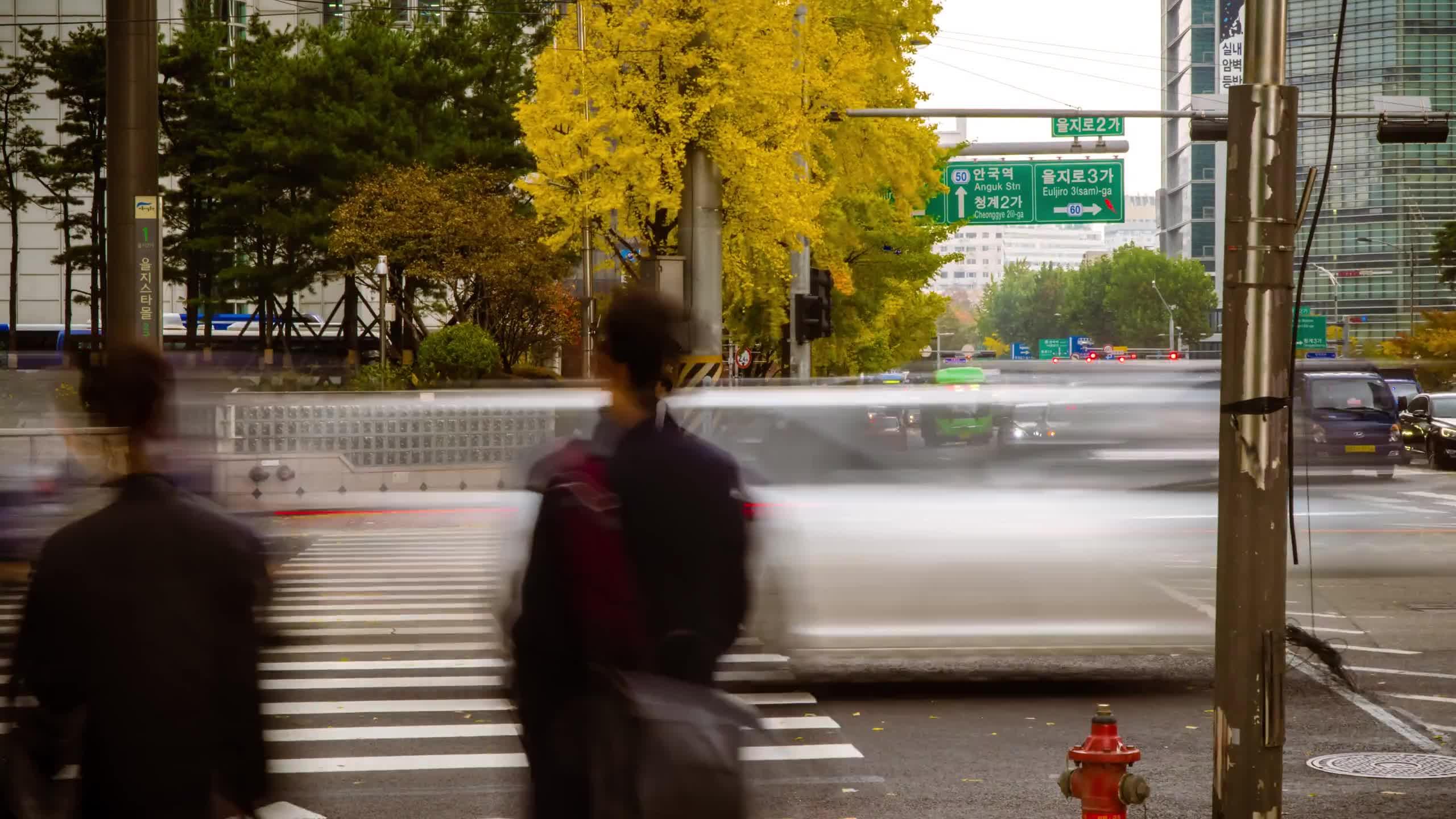 Seoul - 21115