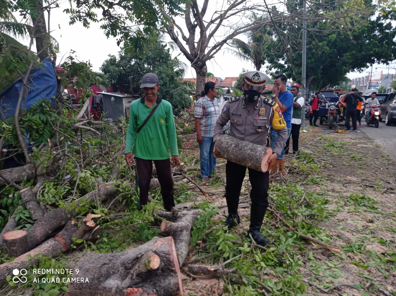 Urai Kemacetan, KBO Satlantas Polres Bangkalan Tepikan Pohon Tumbang