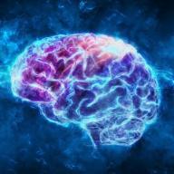 Otak Otak